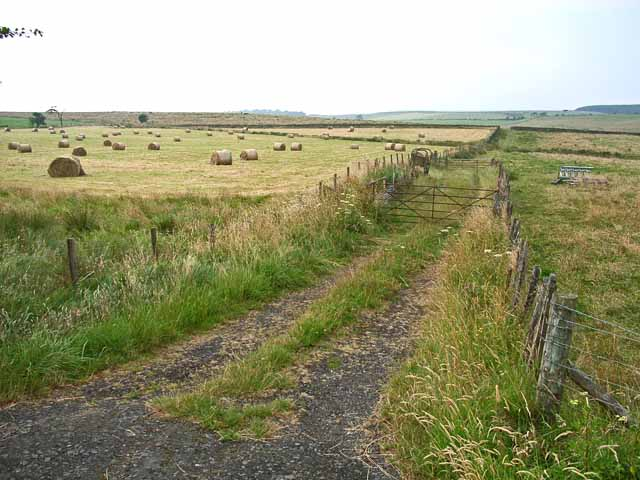 Fields near Hadrian's Wall