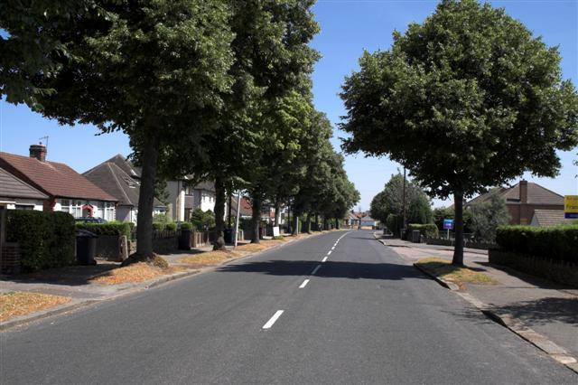 Langer Lane