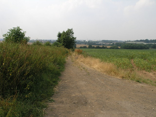 Track and Nettles