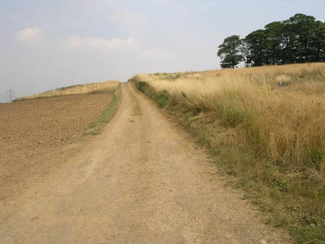 Track to the Horizon