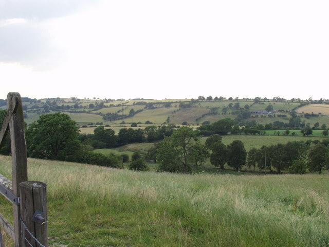 Valley grazings near Faraway