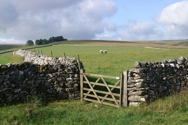 Farmland near Whygill
