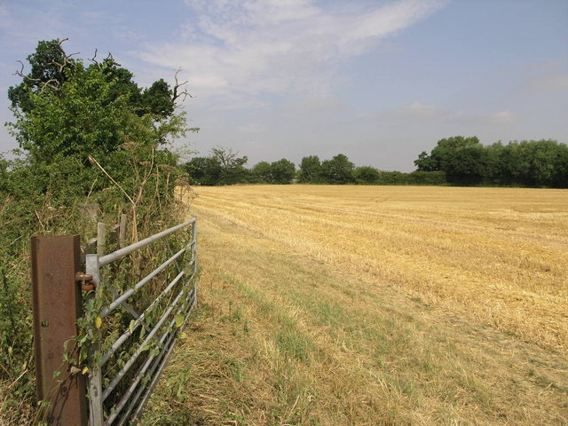 A Gate and Another Field