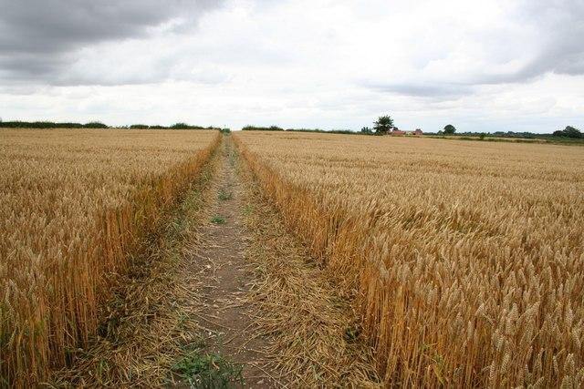 Bridleway to Corner Farm