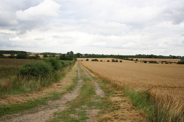 Bridleway to Wass Lane