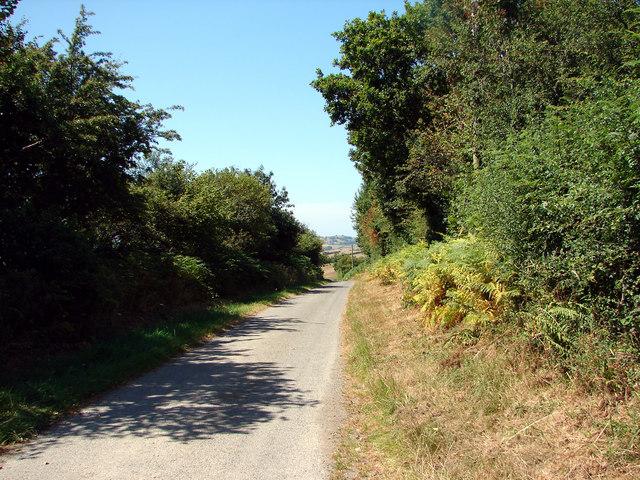 Country lane near Llanfihangel-y-Creuddyn