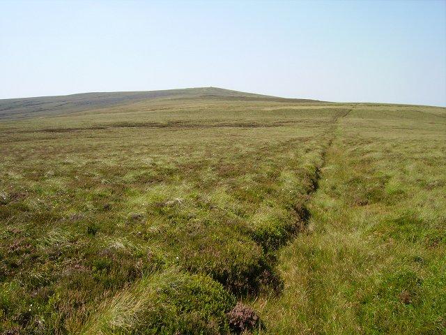 Killhope Law from Westend Moor