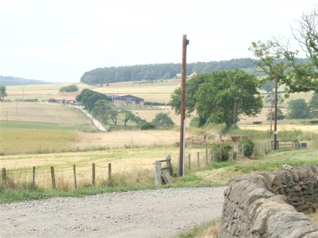 Track leading to South Brandon Farm