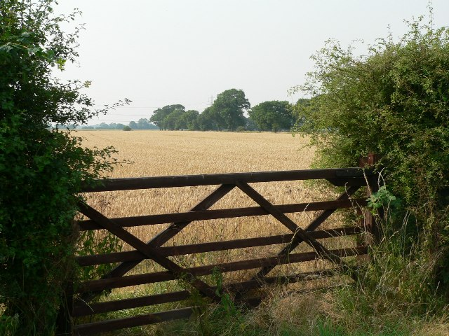 The Gate Into The Barley Field