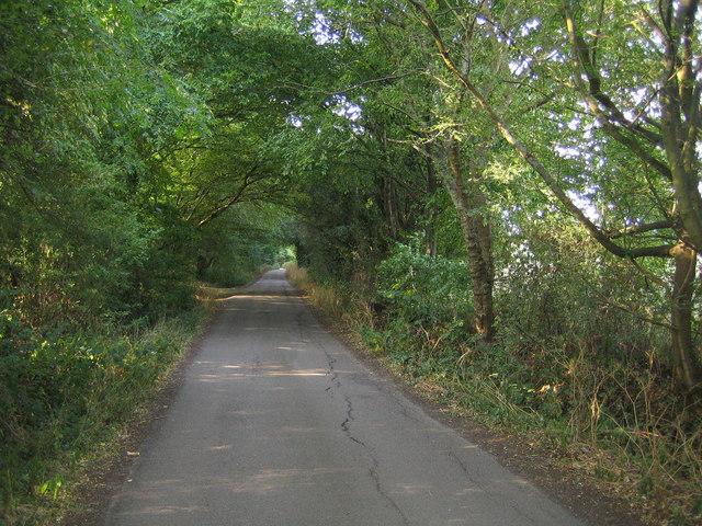 Welwyn: Holwell Hyde Lane
