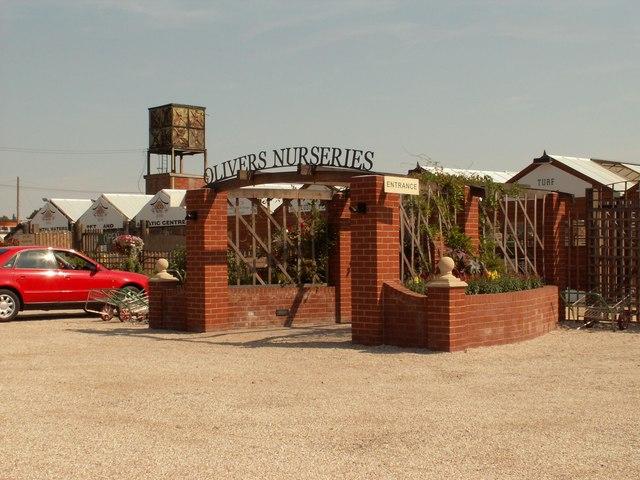 Oliver's Nurseries, Witham, Essex