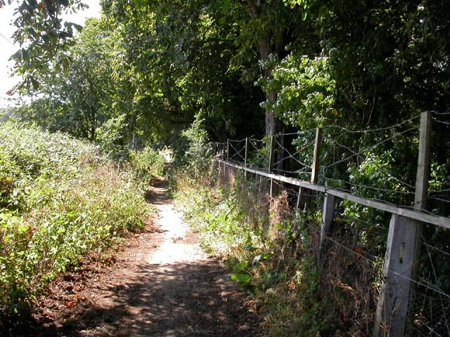 Approach to Dallington Heath