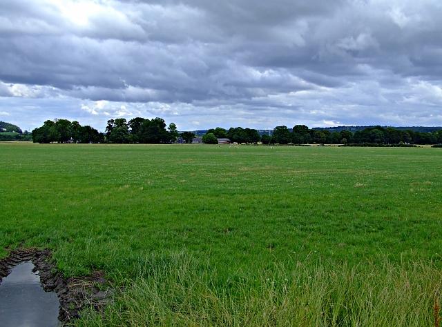 Farmland near Urray
