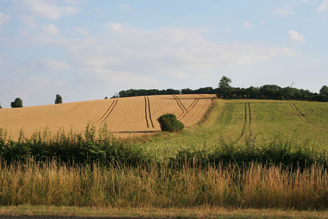 Farmland near Tugby