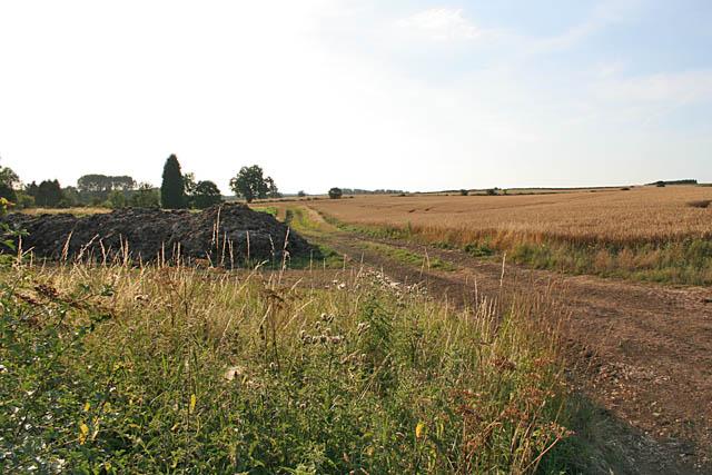Farmland near Belton-in-Rutland