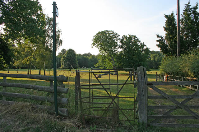 Parkland at Allexton Hall, Leicestershire