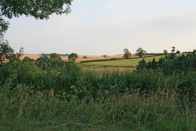 Countryside near Belton-in-Rutland
