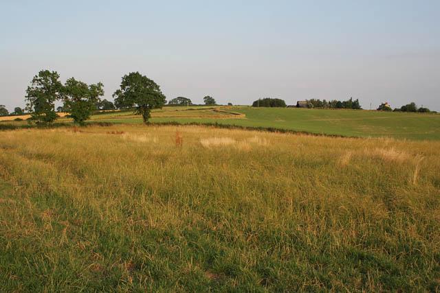 Farmland near Launde Abbey
