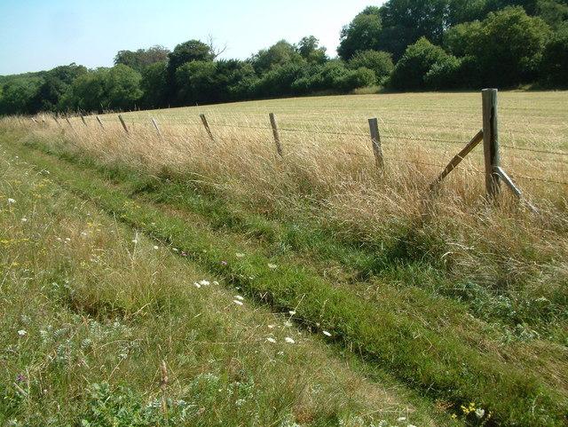 Ackling Dyke