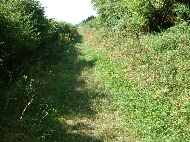 Ackling Dyke (Roman Road)