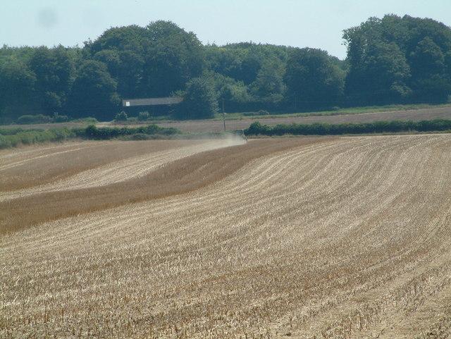 Ploughing, Nine Yews, Dorset