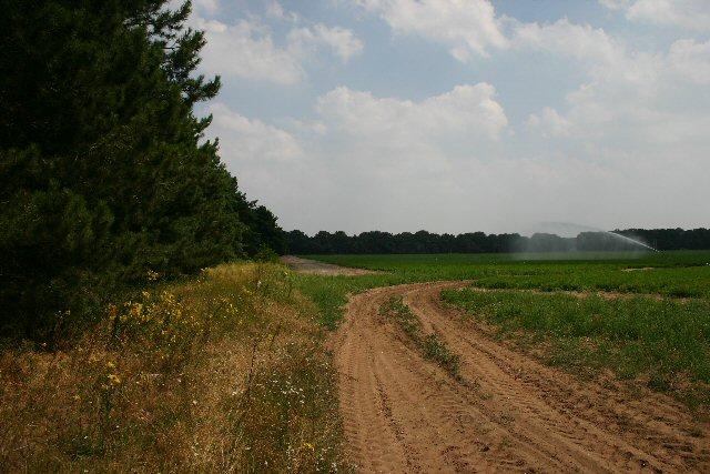 Field entrance near Chamberlain's Buildings Farm