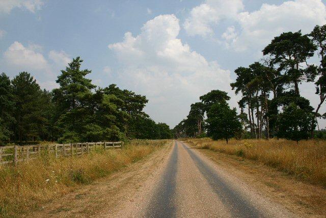 Private track to Rakeheath Farm