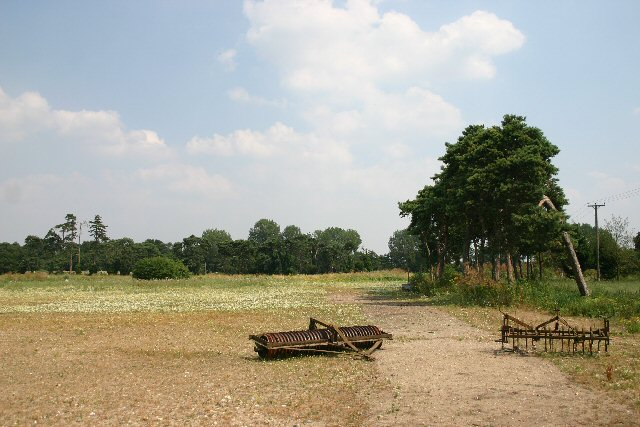 Uncultivated field at Holywell Row
