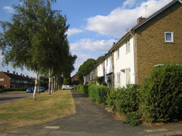 Welwyn: Thistle Grove