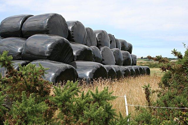 A Modern Haystack