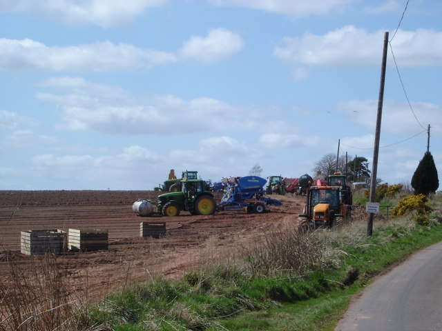 Potato Planting at Fawside, Gordon 2006