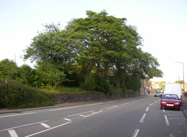Carr House Road (A6036), Shelf
