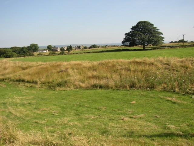 Fields off Carr House Road, Shelf
