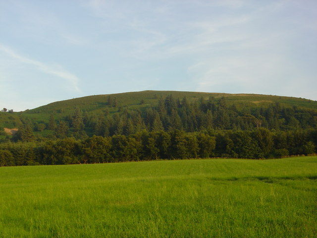 Mochrum Wood