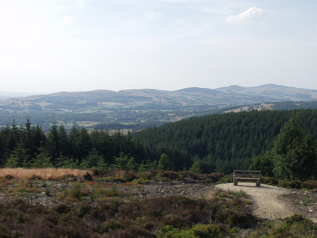 Viewing point deep in the Llandegla Forest