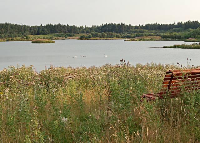 Loch Edensmuir