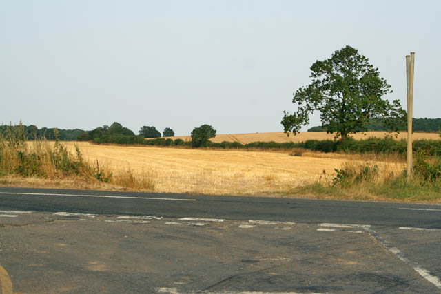 Farmland near Barkston Heath