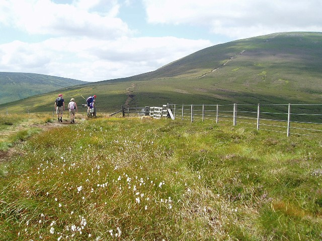 On the path from Scald Hill to The Cheviot
