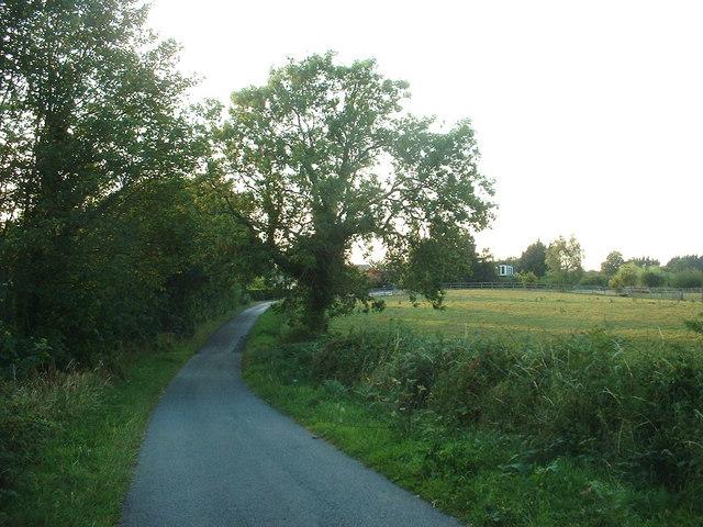 Lane at Blackbrook