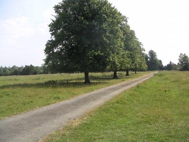 Shenley Hill Farm Paddock