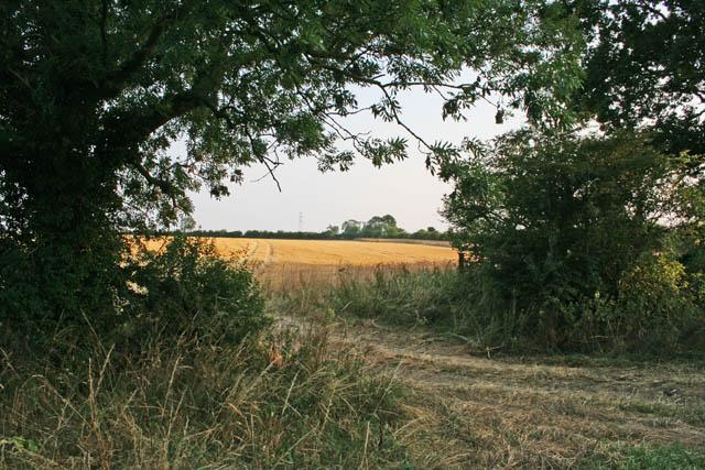 Farmland near Welby