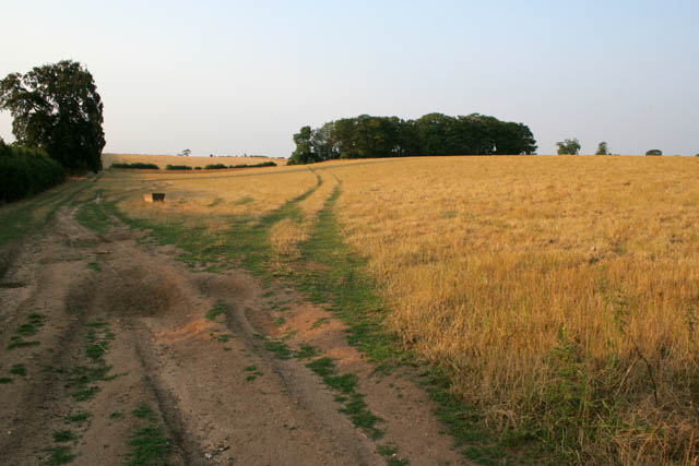 Farmland near Welby