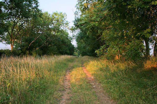 Green Lane near Harrowby