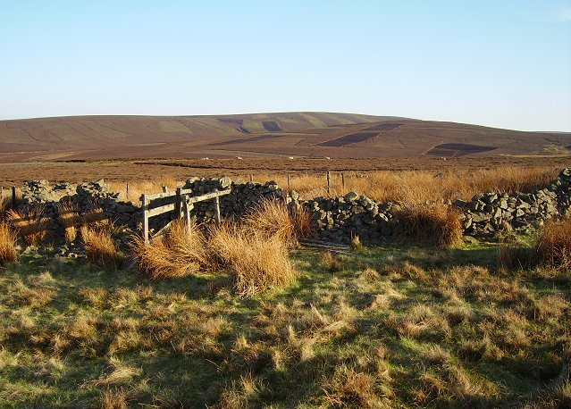 Newlands Hill