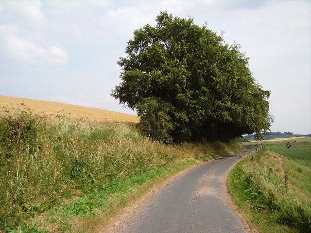 Bassendean-Legerwood road