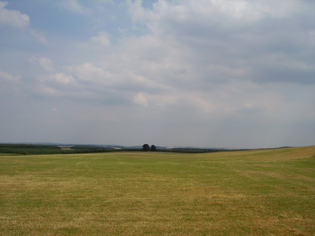 Big field, big sky