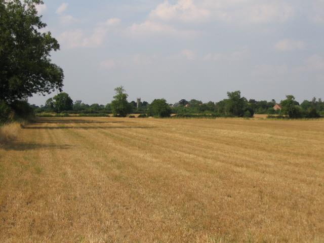 Stubble field off Biddestone Lane