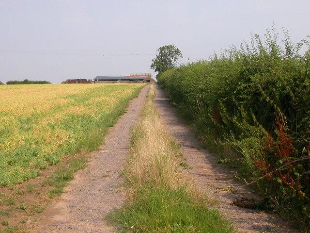 Wolvey - Coal Pit Lane