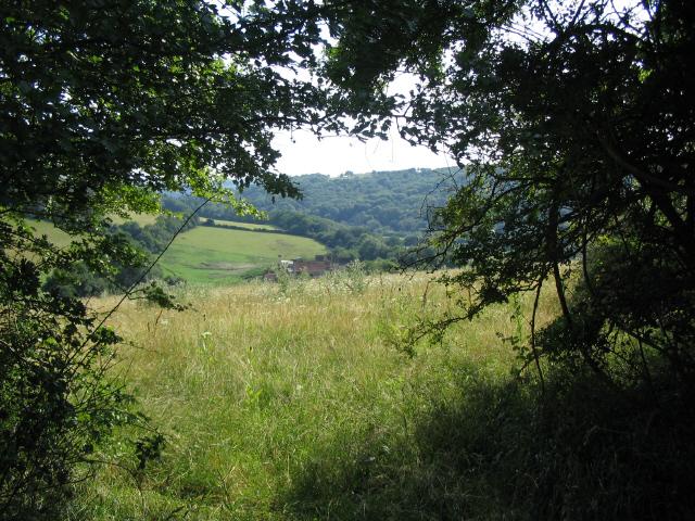 Honeybrook Farm