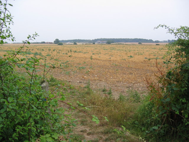Farmland at SE998449